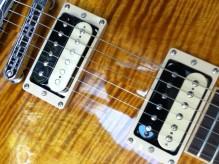 Gibson Slash Appetite les Paul - Alnico II zebra pickups